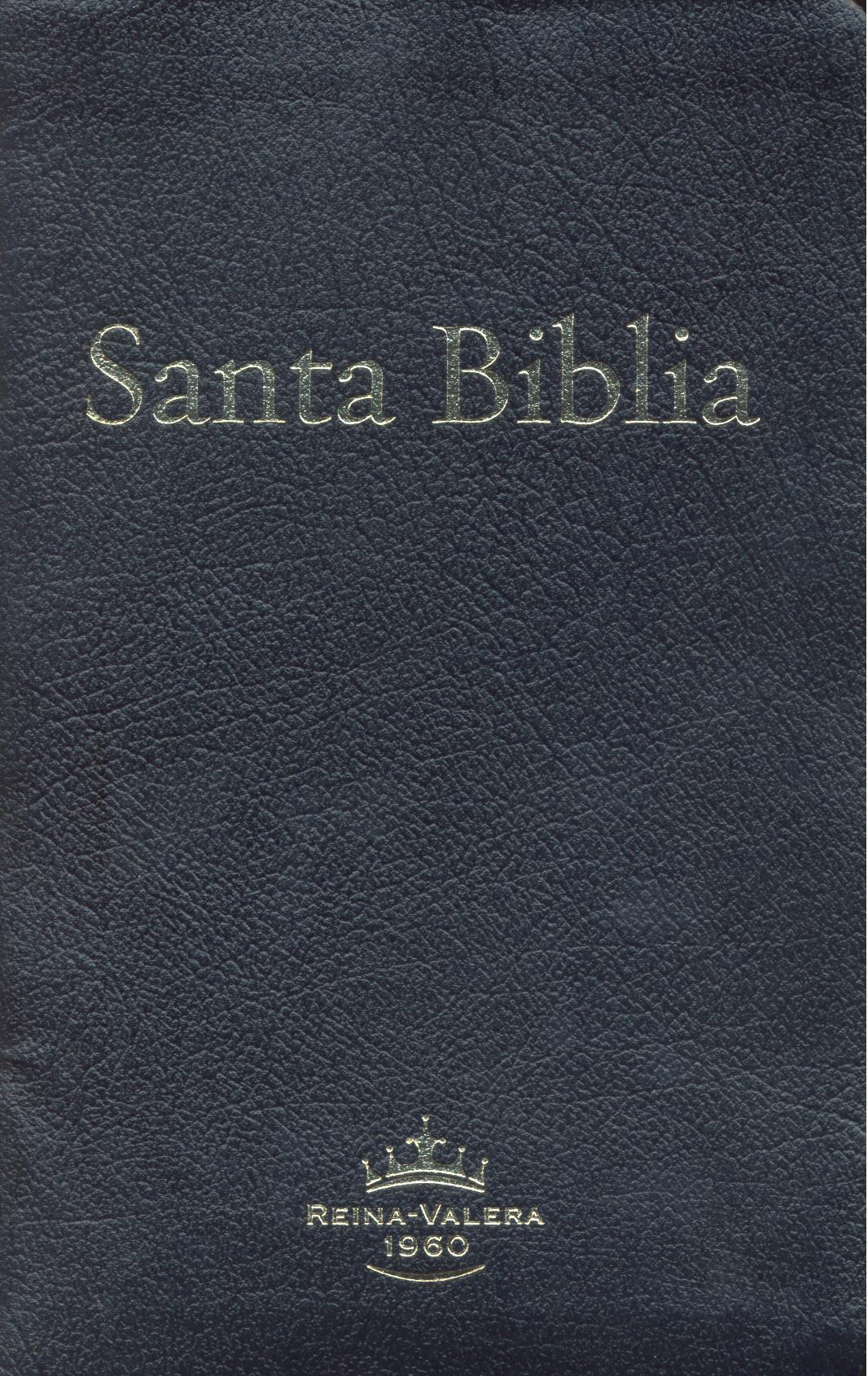 ABS Spanish Large Print Bible, Bonded Leather, index
